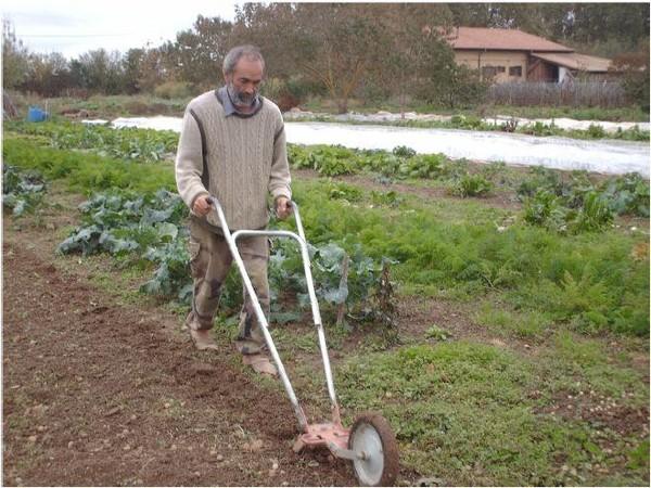 Résultats Google Recherche d'images correspondant à http://jardinonssolvivant.fr/WordPress/wp-content/uploads/2012/12/Pierre-Besse.jpg