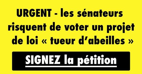 """PÉTITION - Stop aux """"sénaTUEURS d'abeilles"""" !"""