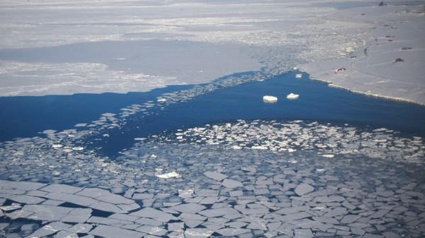 « La planète Terre fait face à une urgence climatique »: 11.000 scientifiques mettent en garde contre les « souffrances » à venir