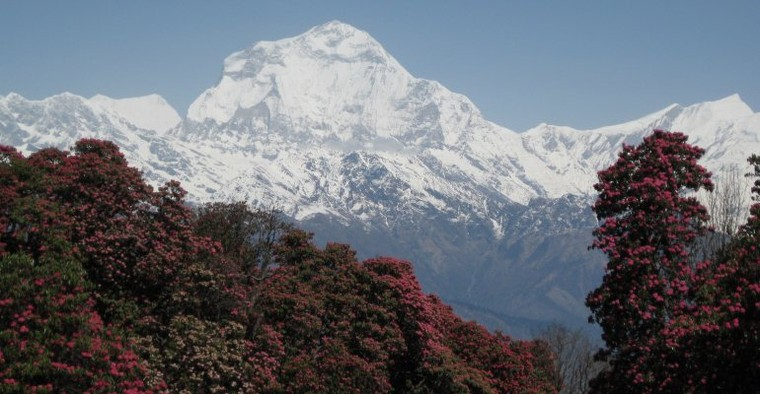 Annapurna Base Camp Trekking | Book Now Annapurna Base Camp Trek