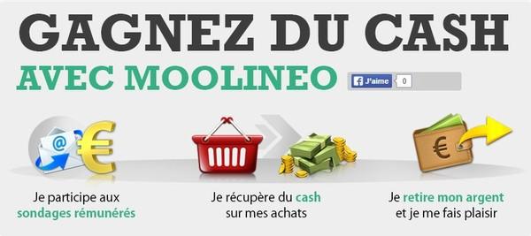 Arrondissez vos fins de mois : Gagner de l'argent facilement, rapidement et gratuitement.