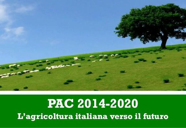 PAC 2014-2020: il Consiglio dei Ministri approva il piano delle scelte nazionali