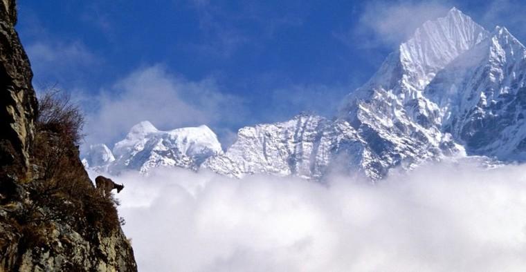 Langtang Helambu Gosainkunda Trekking