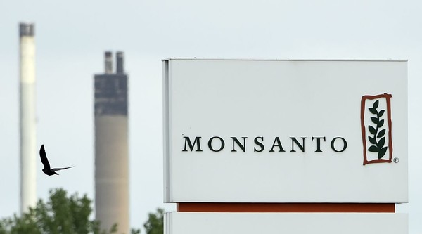 Why Bayer's massive new deal to buy Monsanto is so troubling
