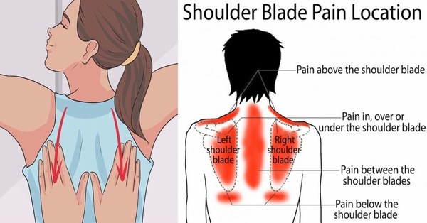 How to Tell if the Pain Between Your Shoulder Blades is a Warning Sign of Cancer - Healthy Food Society