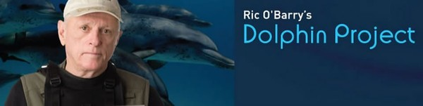 Donate to Ric O'Barry's Dolphin Project - Ric O'Barry's Dolphin Project | Earth Island Institute