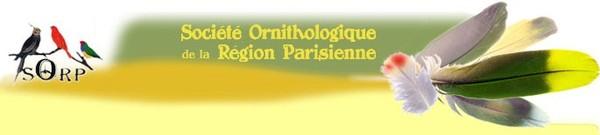 SORP - Élevage - Articles Divers - Sciences :: Génétique et accouplement des Canaris