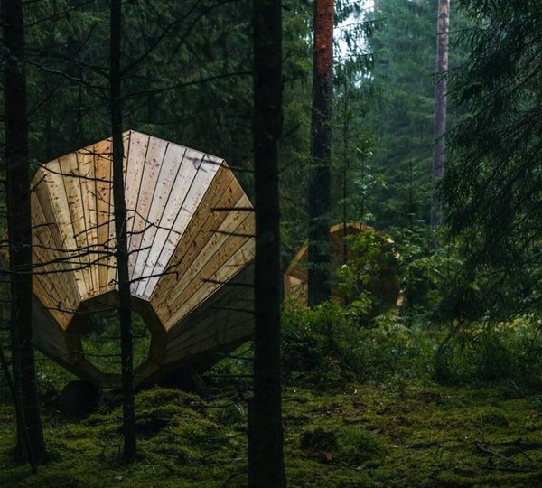 Giant Wooden Megaphones Amplify the Sounds of a Forest | The Creators Project