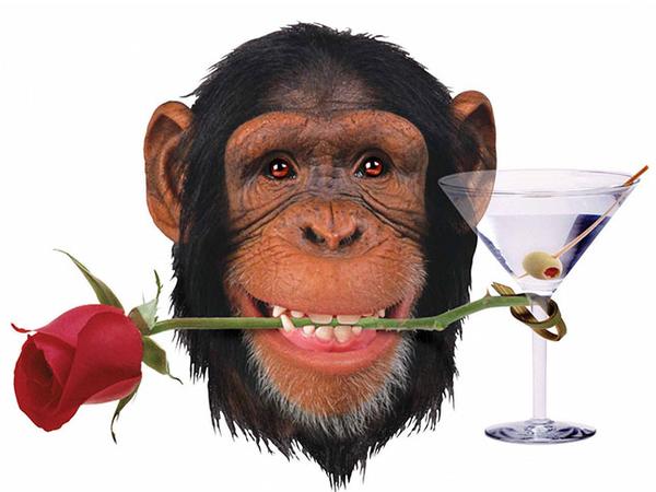 5 Valentine's Day Gift Ideas For Her • RedGaq
