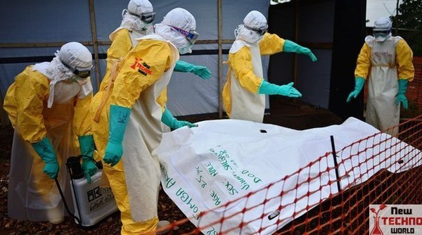 Australia to contract private medical staff to fight Ebola| World News