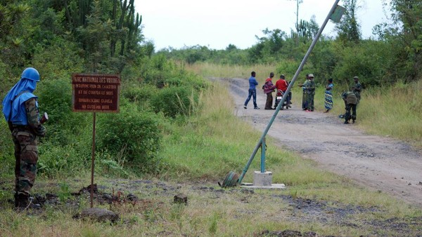 Parc des Virunga en RDC: des employés de WWF menacés de mort - France - RFI
