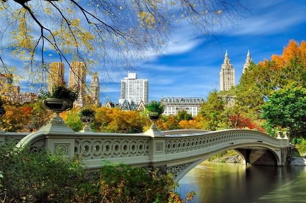 Quite cute photos central park - NICE PLACE TO VISIT