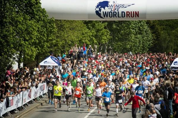 Vidéo : Le Wings for Life World Run à Hennebont - Vidéo | Red Bull
