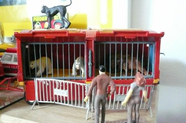 Visite de la cage aux ours bruns et blancs ...