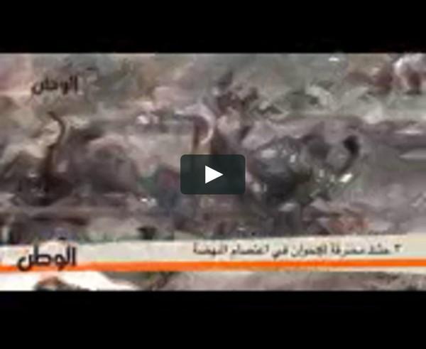 3 جثث متفحمة للإخوان في اعتصام النهضة - YouTube on Vimeo