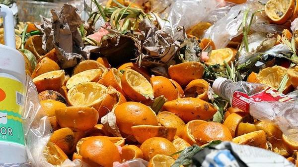L'Assemblée nationale dit stop au gaspillage alimentaire