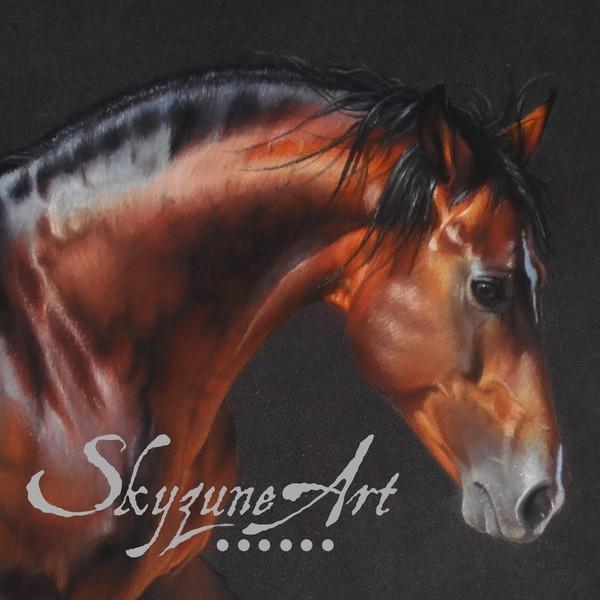 SKYZUNE ART • Artiste équin et animalier