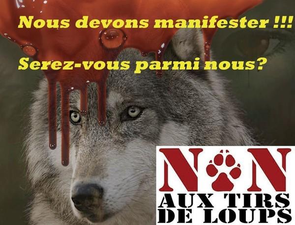 Manifestation citoyenne POUR le Loup le 12 mars à Paris - Loup
