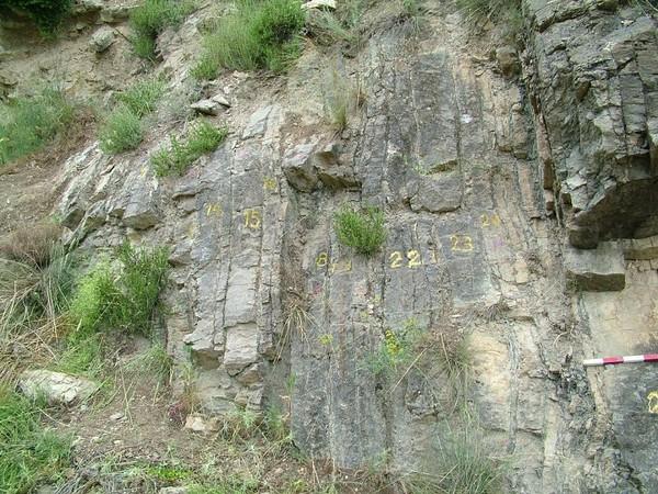 Le IVème Congrès international des géologues a lieu à La Seu d'Urgell du 20 au 25 juin | ALL ANDORRA