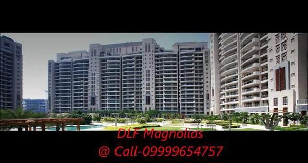 Dlf Magnolias price