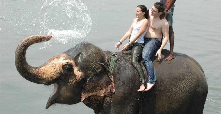 Chitwan Tour Package | Book Now Chitwan Package Tour