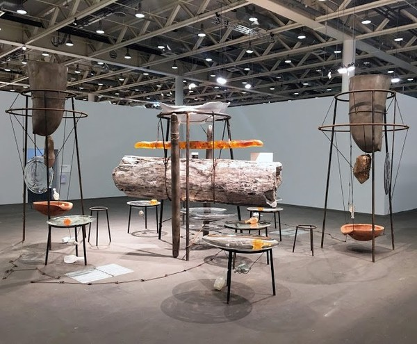 Exposition Art Blog: Tunga - Jose de Barros Carvalho e Mello - Brazylian Conceptual Artist