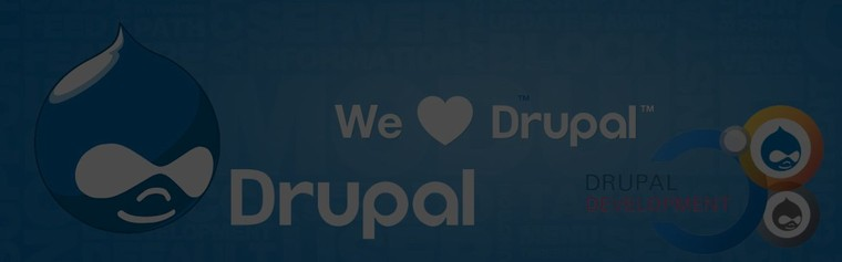 Hire Drupal Developers, Custom Drupal CMS Web Development Company