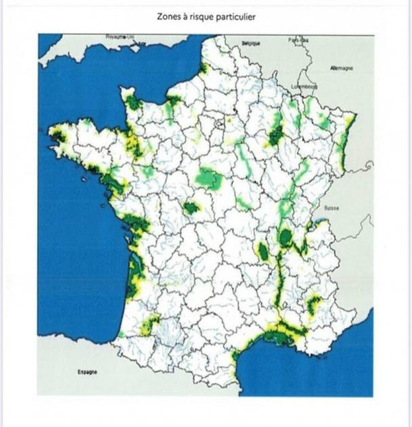 Influenza H5N8 : La France ordonne un confinement partiel des volailles