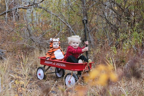Pretty wonderful calvin and hobbes halloween costume - NICE PLACE TO VISIT