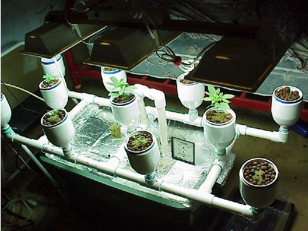 Plant nutrients hydroponic systemsgrow lights hydroponic plant nutrients hydroponic systemsgrow lights hydroponic equipment indoor garden workwithnaturefo