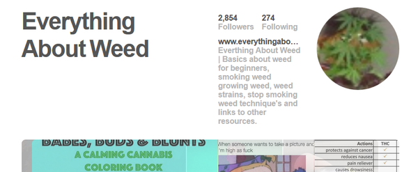 25 Must-Follow Pinterest Accounts - I Love Growing Marijuana