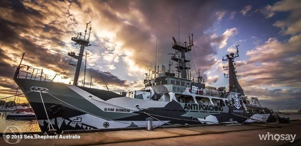 Sea Shepherd Conservation Society - Google