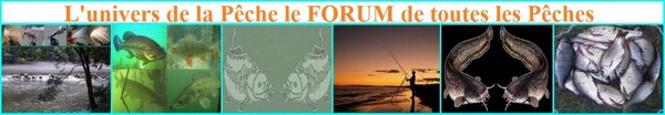 L'univers de la pêche :: Le Forum de toutes les Pêches, Un Monde où Règne, Passion, Partage, Respect et Convivialité