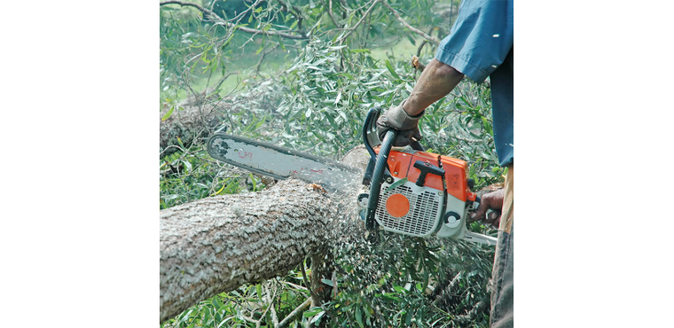 Working With Chainsaws - Safety Boots That Fully Protect - Blog