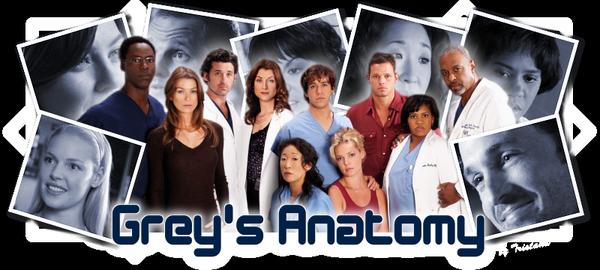 Blog de Grey--s--Anatomy