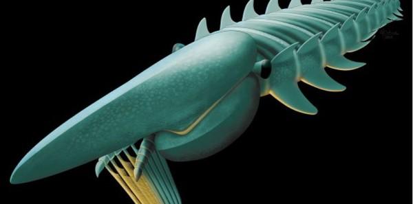 Un monstre marin vivant il y a 480 millions d'années découvert