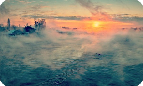 Some People are Dark Cloud, when they Disappear will Brighten up Our Days. - Daily Poetry and Stories Portal   Easy Branches