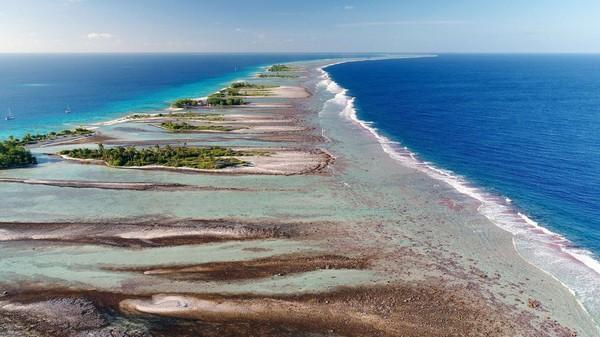 La vie secrète des atolls de Polynésie | ARTE