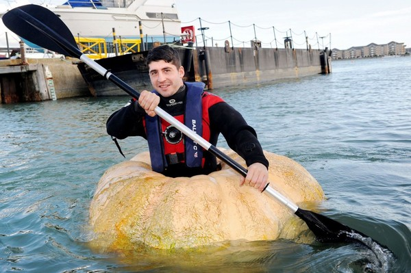 Artist sails giant PUMPKIN to the Isle of Wight... and back again
