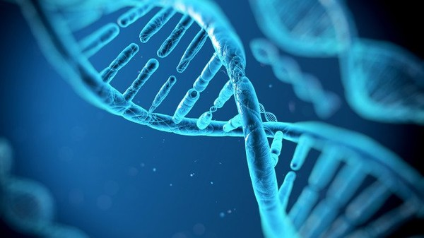 Science Has Discovered How To Reverse The Age Of DNA By 20 Years