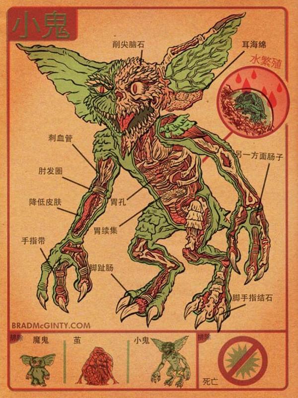 L'anatomie des monstres – Alien, Predator, Gremlins… | Ufunk.net