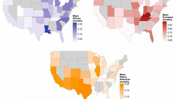Genetic study reveals surprising ancestry of many Americans