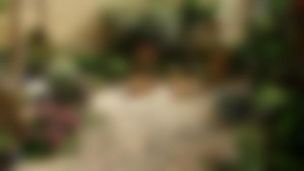 Chambres d'Hôtes Aude : Chambres d'Hôtes Le pouvoir des fleurs - Bio - Google+