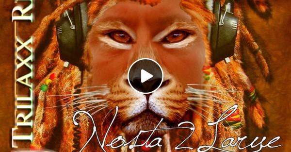 Busta trilaxx remix