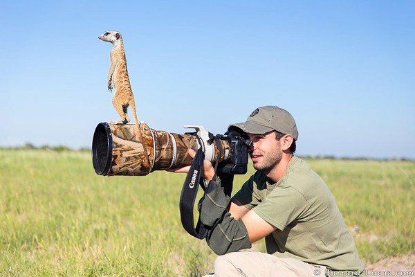 the nature and wildlife photography - NICE PLACE TO VISIT
