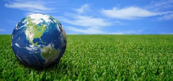 Les enjeux de la gestion durable des forêts et de la lutte contre le braconnage - Santecool