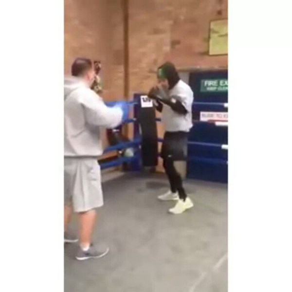 "nia(zkilam) on Instagram: ""harry boxing with mark !this still scares me"""
