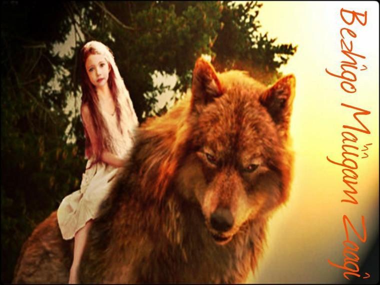 Loups ou Vampires ? à vous de choisir votre camp...