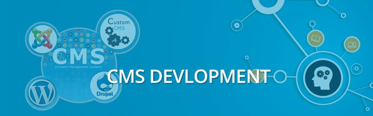 CMS Web Application ,Custom CMS Web Development Company in India