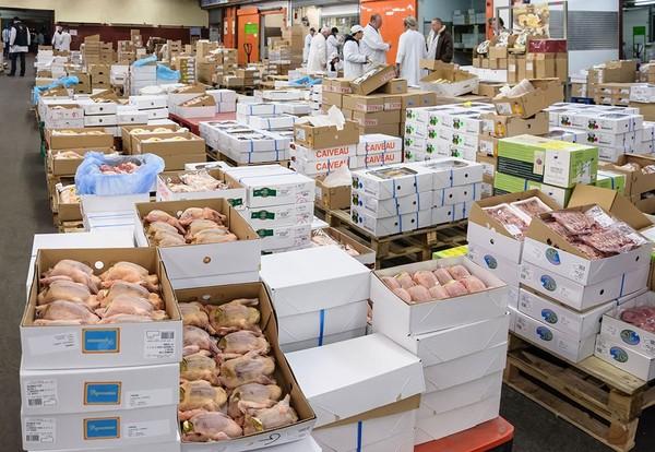 19 chiffres qui dénoncent les conséquences catastrophiques de la surproduction de viande